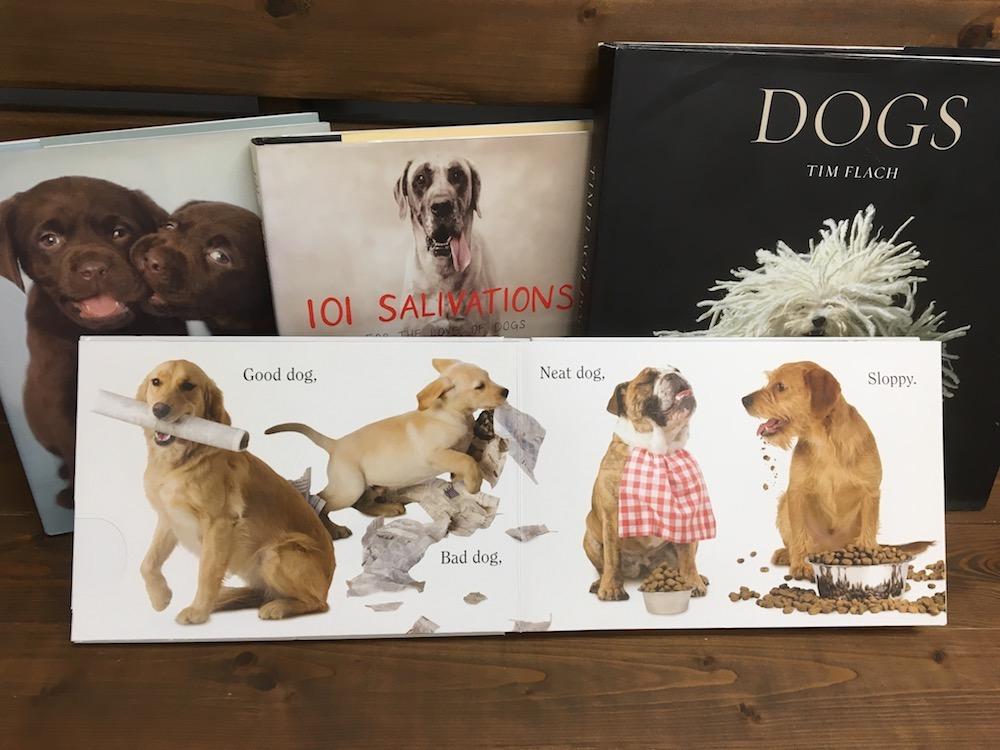 いよいよ秋も深まってきました。犬が登場する本を読みませんか?